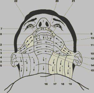 Les secrets du rasage traditionnel, avec ses savoirs-faire ...