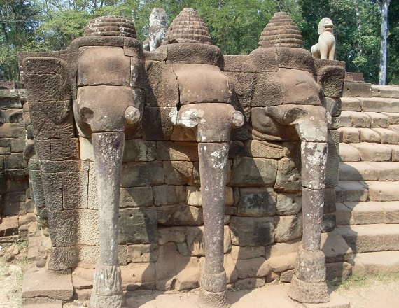 elephant-pp-2